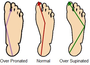 Foot biomechanics.
