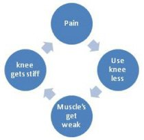A vicious cycle of knee arthritis symptoms