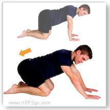 Cat stretch can increase knee flexion after a torn meniscus. Approved use by www.hep2go.com