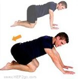 Cat stretch can increase knee flexion as part of meniscus tear treatment. Approved use by www.hep2go.com