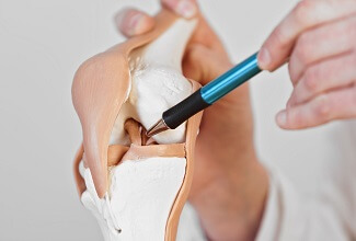 Everything you need to know about knee anatomy