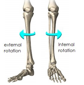 Knee range of motion: Internal and external rotation of the knee