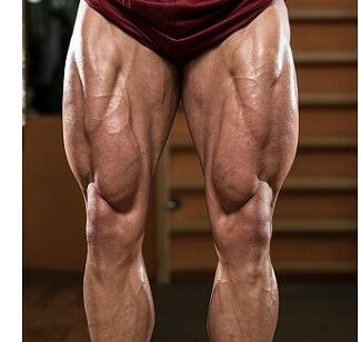 Vastus Medialis Muscle: How to do vastus medialis exercises