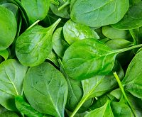 Avoiding purine rich food such as spinach can reduce the risk of gout knee
